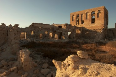 The ruins of Jazira Al Hamra © Philippe Henry / OCEAN71 Magazine