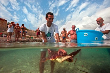 A volunteer at the centre is setting a turtle free © Philippe Henry / OCEAN71 Magazine