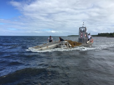 Le Sargator est un bateau conçu pour le ramassage en mer des algues flottantes type sargasses. © Sébastien Favier